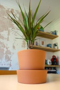 Ikea plant pot teracotta