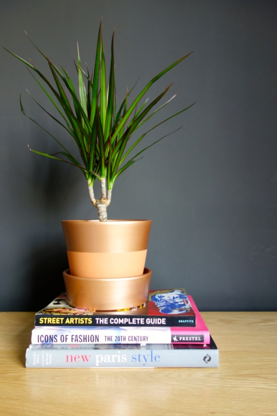 copper plant pot