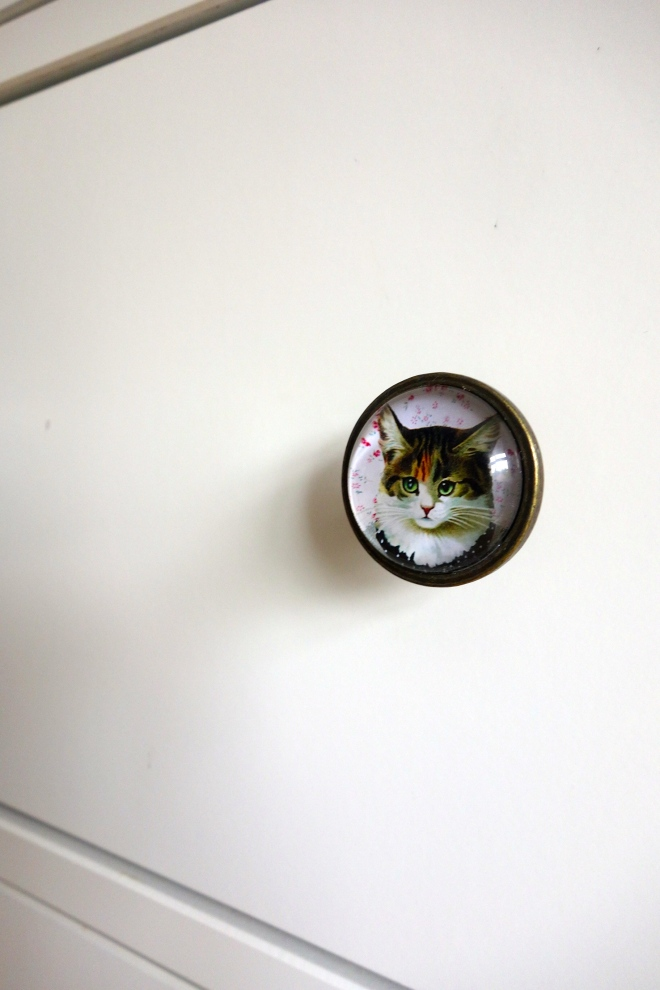 Cat drawer knob