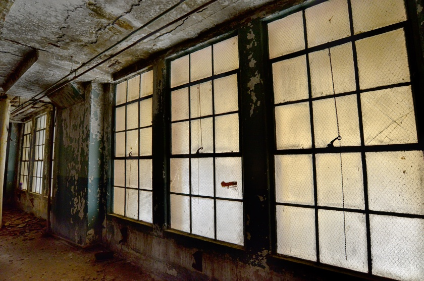 Brooklyn Army Terminal windows
