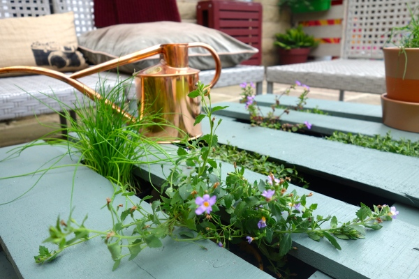 live pallet table copper watering can
